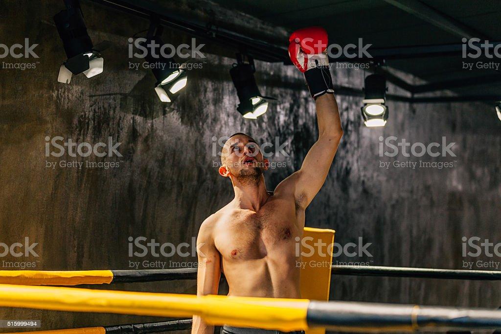 Victory! - Boxer celebrating success stock photo