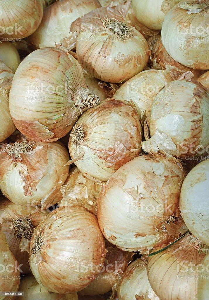 Vidalia onions stock photo