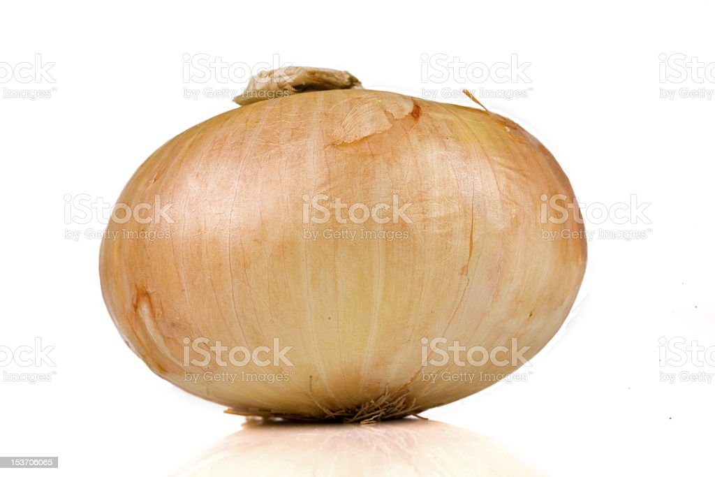 Vidalia sweet onion isolated on white stock photo