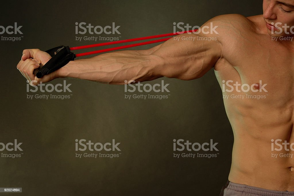 viens on a well built arm royalty-free stock photo