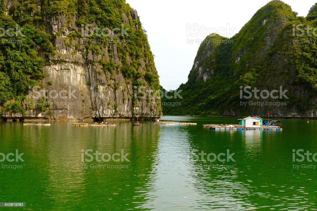 Vietnam- baie d'halong, paysage,pain de sucre stock photo