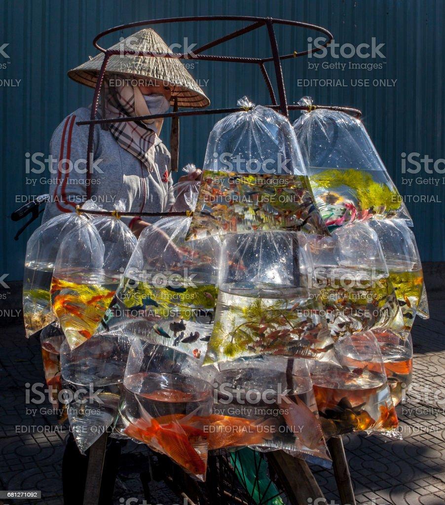 Vietnamese fish seller stock photo