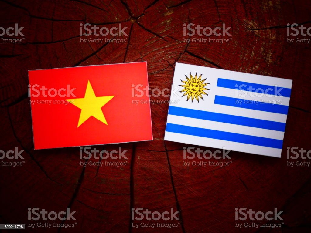 Vietnamese flag with Uruguaian flag on a tree stump isolated stock photo