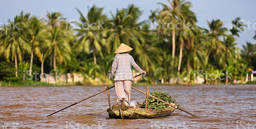 Vietnamese woman rowing  boat in the Mekong River Delta, Vietnam stock photo
