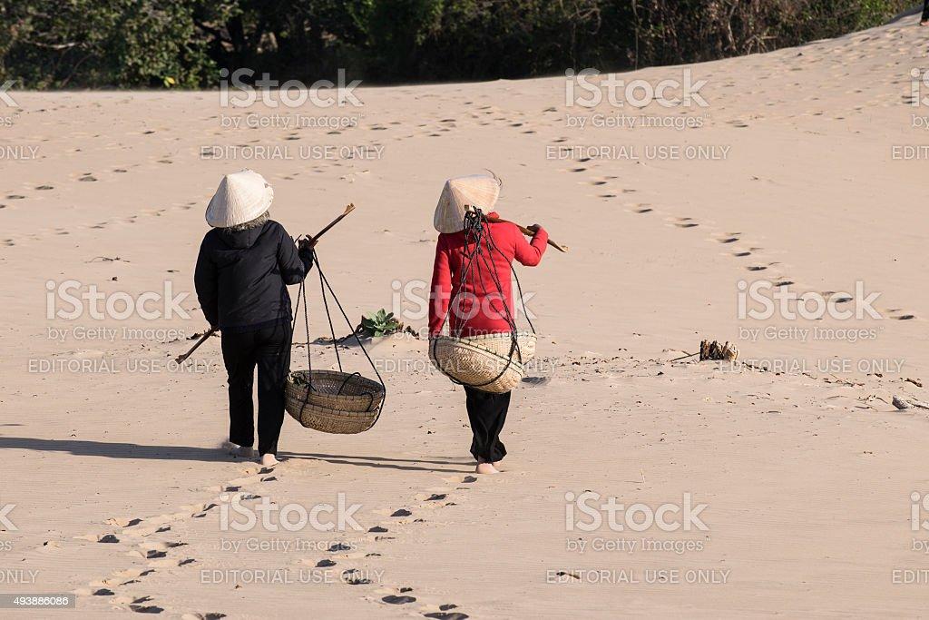 Vietnamese women carry shoulder pole stock photo