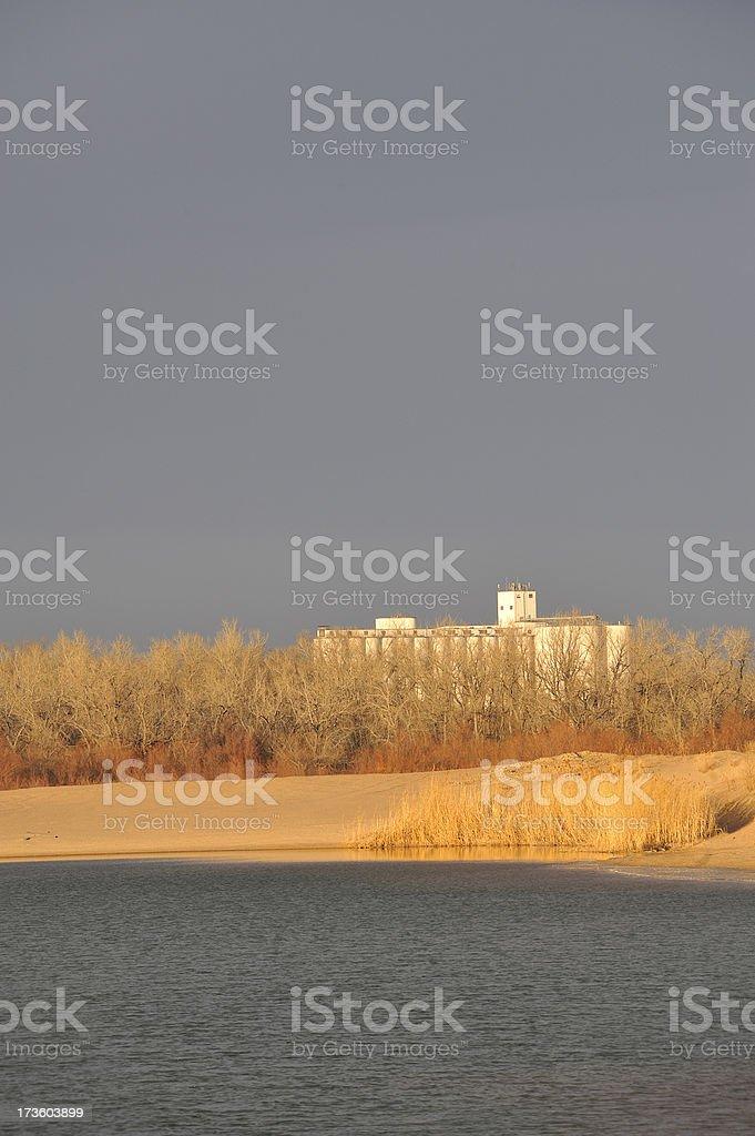 View across pond in winter (Vert) stock photo