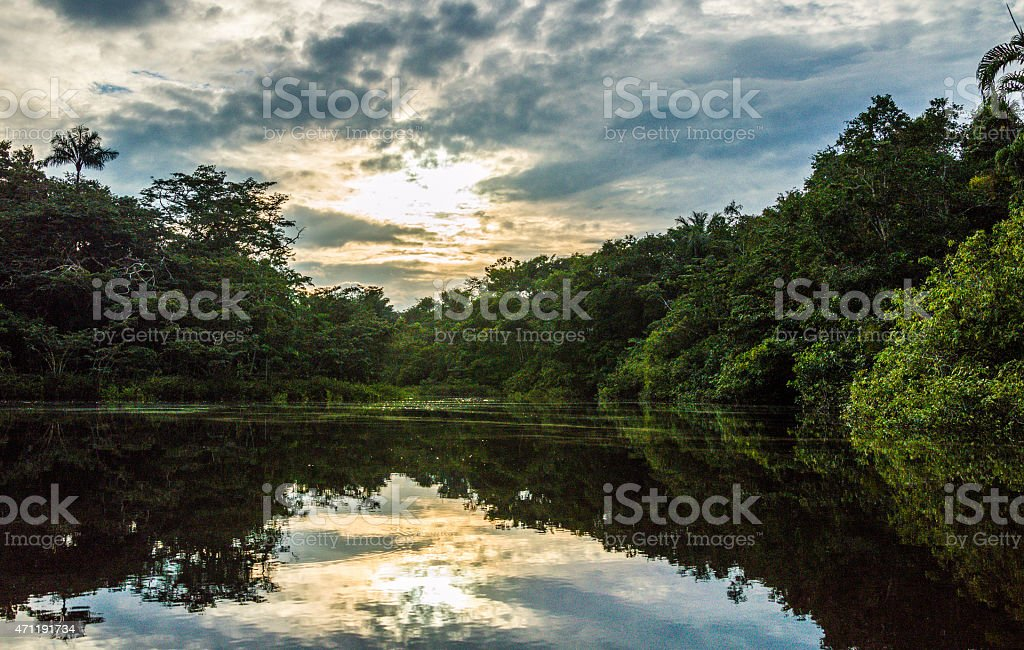 View along the Cuybeno river. stock photo