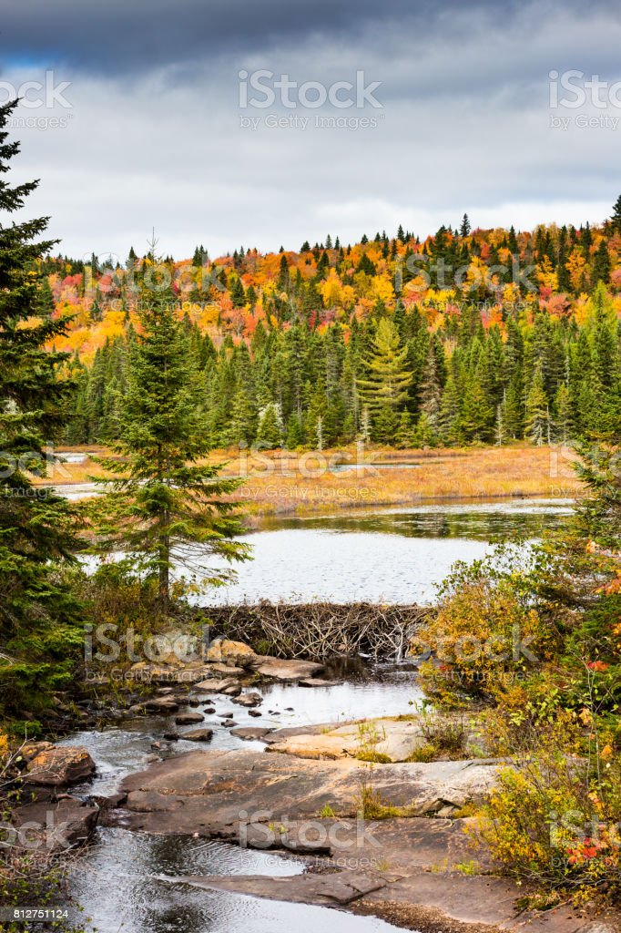 A view at a tiny portion of Wapizagonke Lake which is 9.2 km/5.7 miles long, in La Mauricie National Park situated in the Canadian province of Québec. stock photo