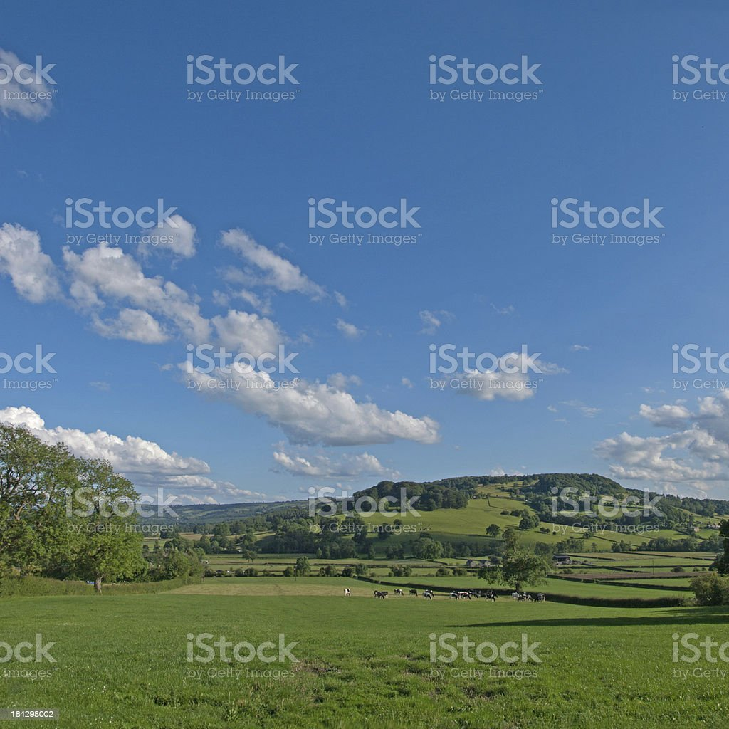 View at Rowsley stock photo
