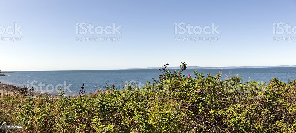 View Bay of Fundy royalty-free stock photo