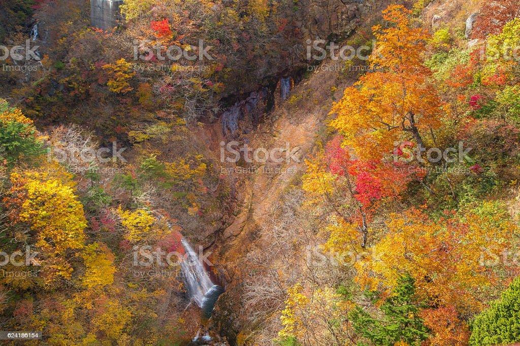 View Beautiful Autumn stock photo