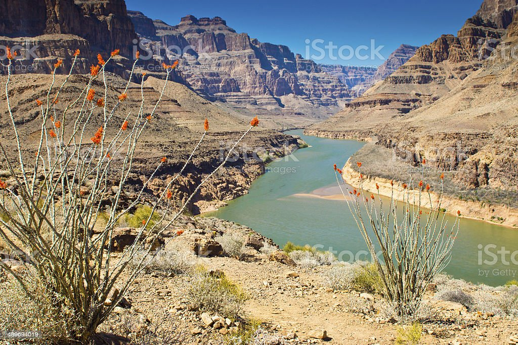 View down the Grand canyon towards Lake Mead stock photo