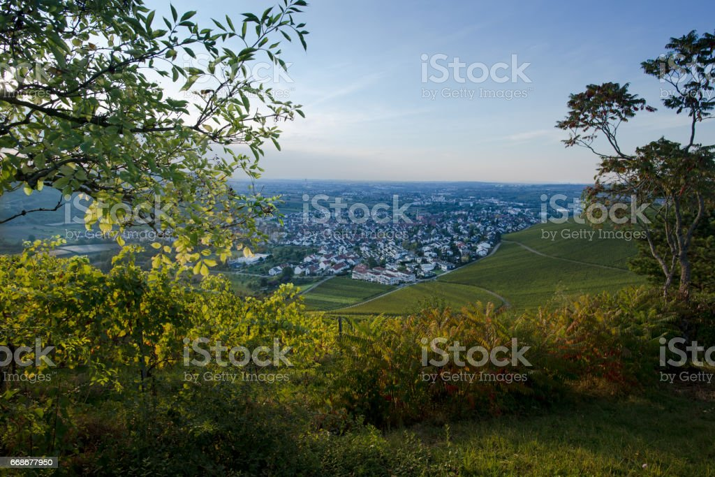 View from a vineyard at the villages Beutelsbach, Endersbach and Fellbach stock photo