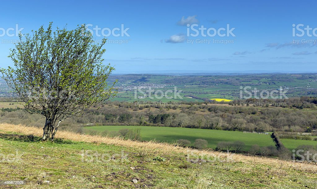 View from Black Down the highest hill Mendip Hills Somerset stock photo