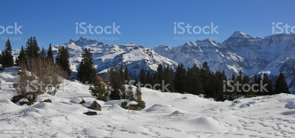View from Braunwald, Swiss Alps stock photo