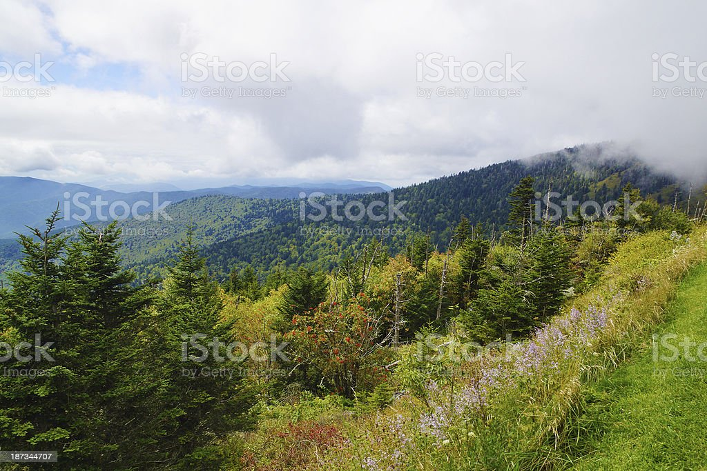 View from Clingman's Dome Great Smoky Mountain National Park stock photo