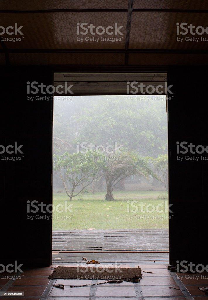 Вид из внутренней дверью см. тропический дождь в день Стоковые фото Стоковая фотография