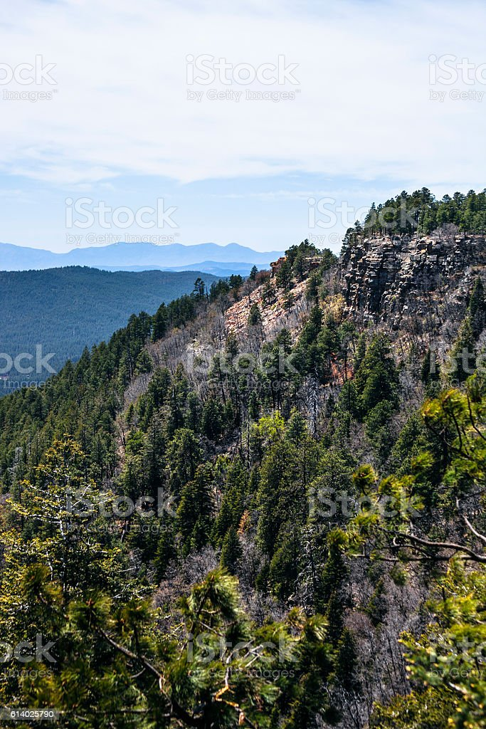 View from Mogollon Rim, Arizona. stock photo