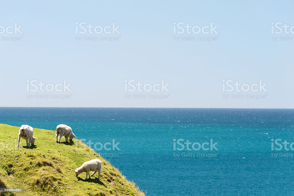View from Mount Maunganui, New Zealand stock photo