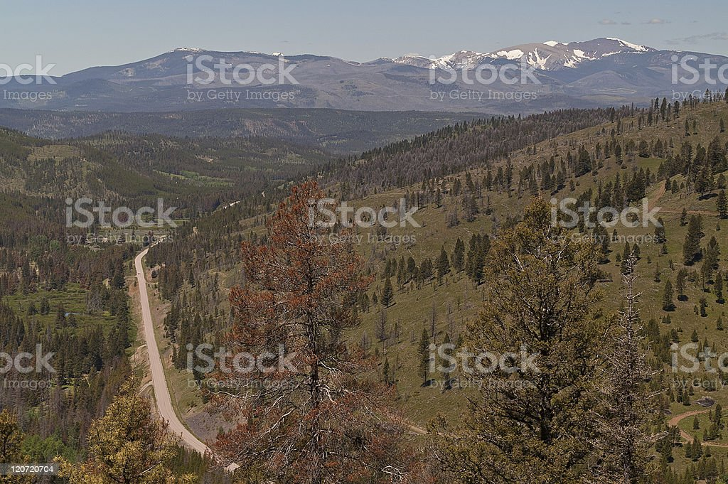 View from Mountain Pass stock photo