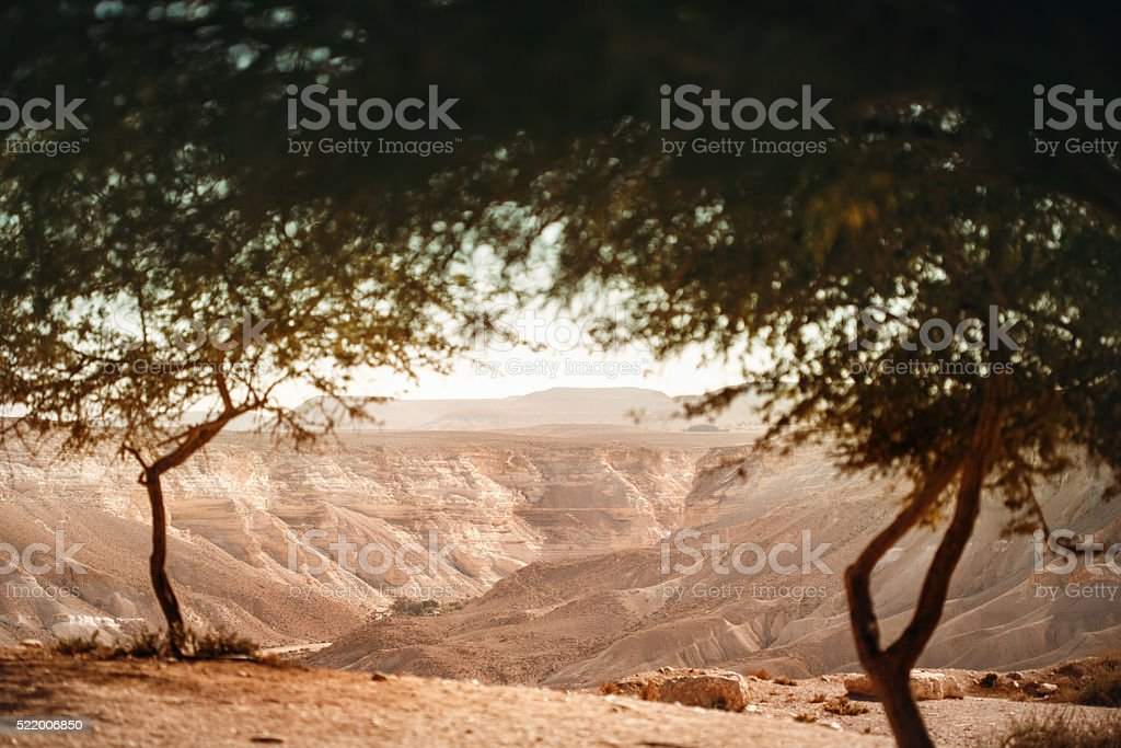 View from Oasis on Negev Desert stock photo