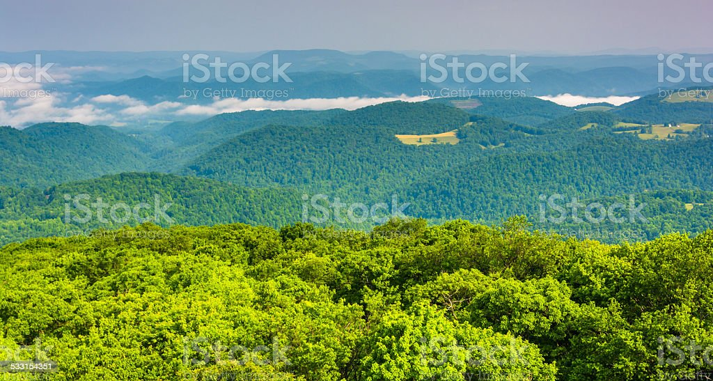 View from Olson Observation Tower, Monongahela National Forest, stock photo