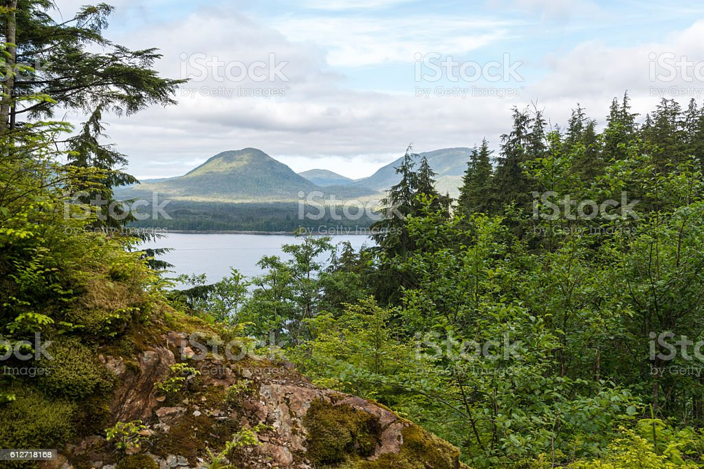 View from Rainbird Trail in Ketchikan Alaska stock photo