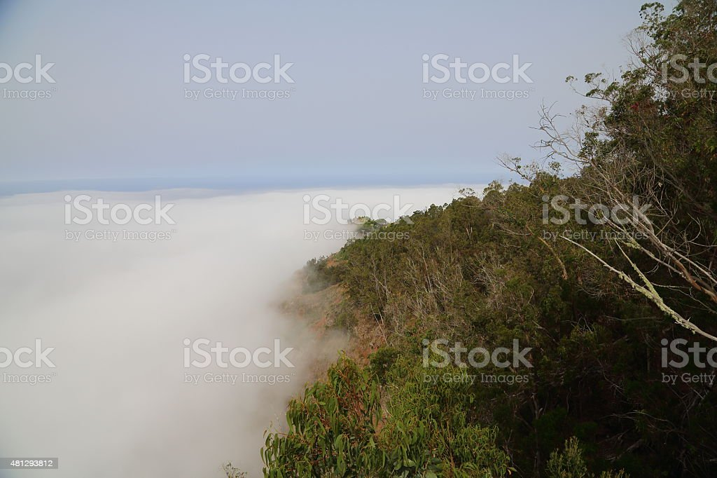 View from Sea cliff Cabo Gir?o - 580 meters stock photo