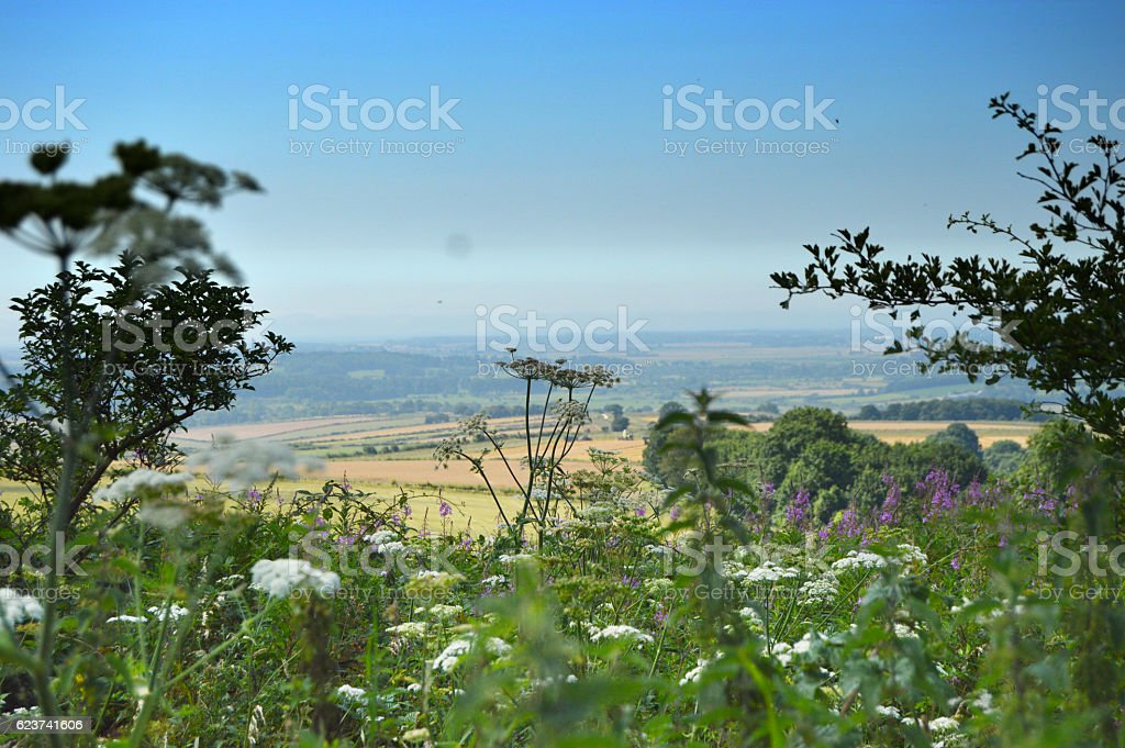 View from South Downs Way stock photo