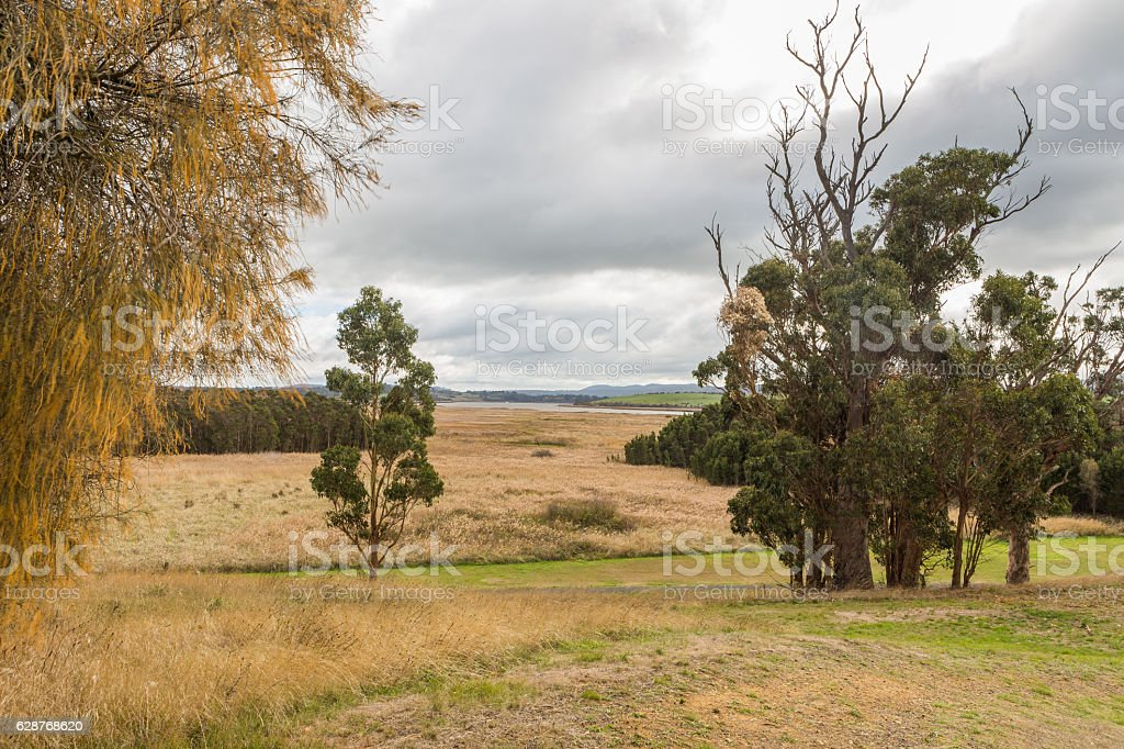 View from Tamar Island over the Tamar river and wetlands stock photo