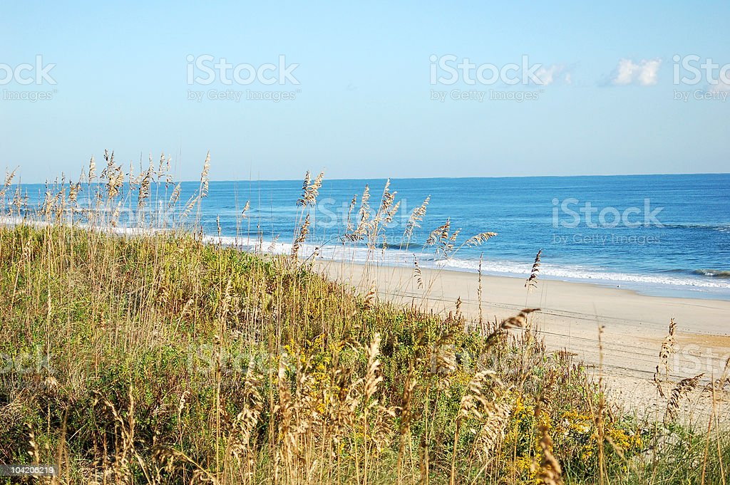 View from the dunes royalty-free stock photo