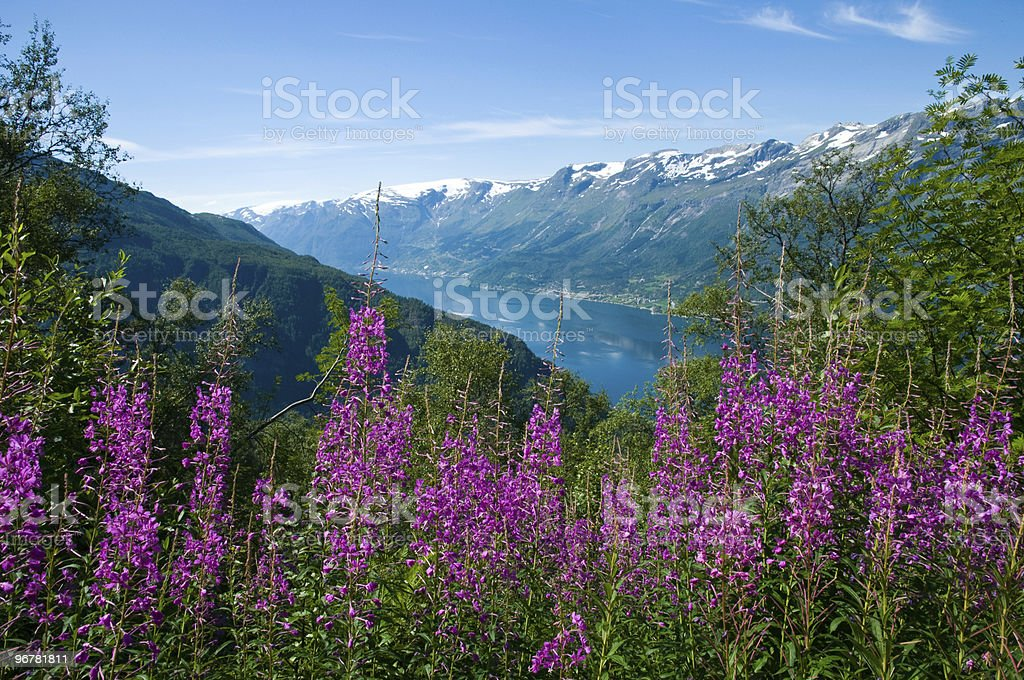 View from the hardangervidda to a Fjord stock photo