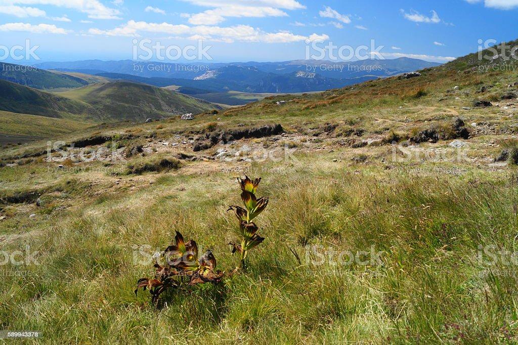 View from the mountain (2000 m), Sinaia, Romania stock photo