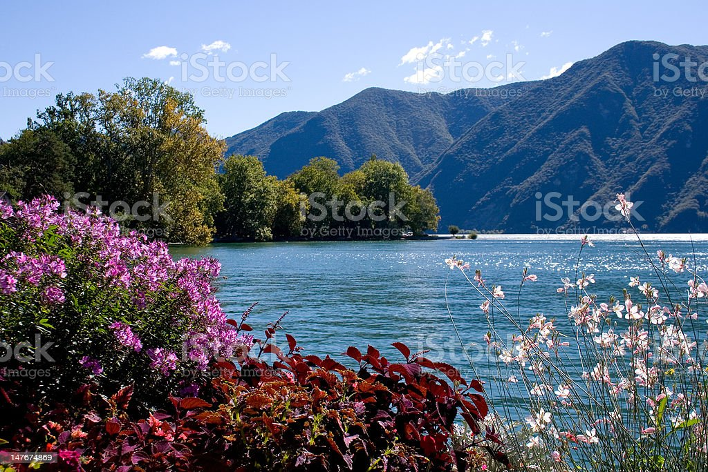 View from the park on lake and mountains royalty-free stock photo