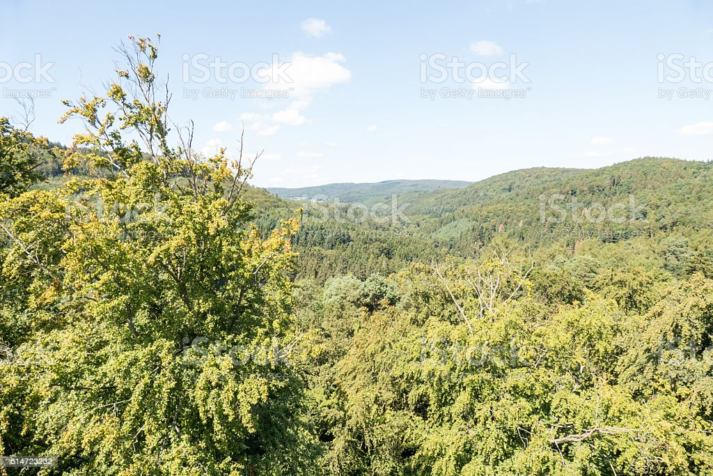 View from the ruin tower Burg Lowenstein. stock photo