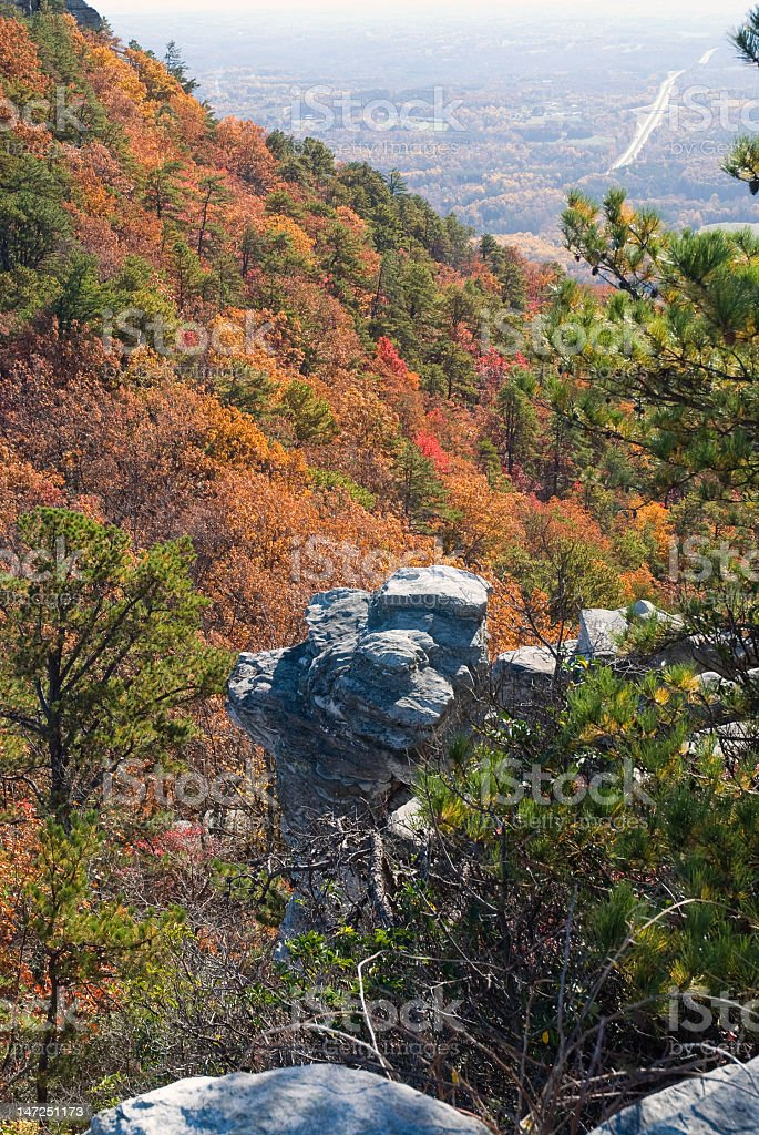 View from the Top Fall Foliage royalty-free stock photo