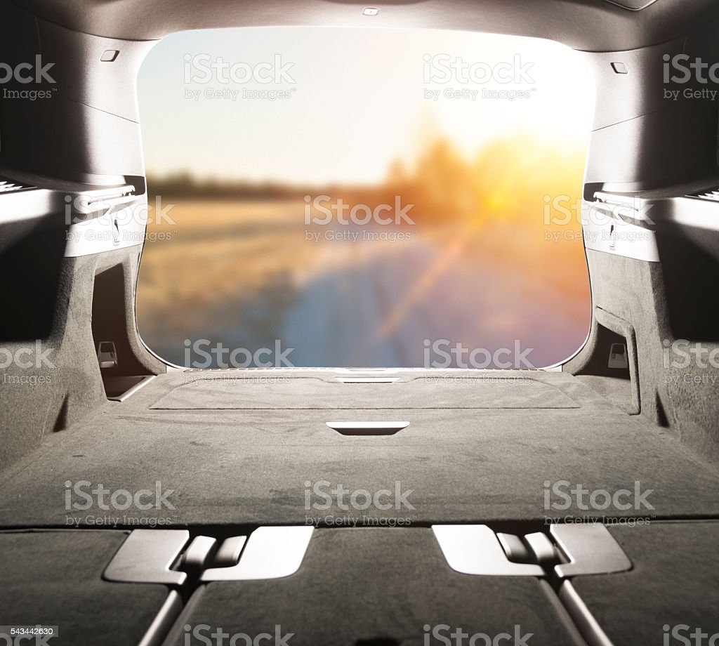 View from the trunk. Sunny day in a country side. stock photo