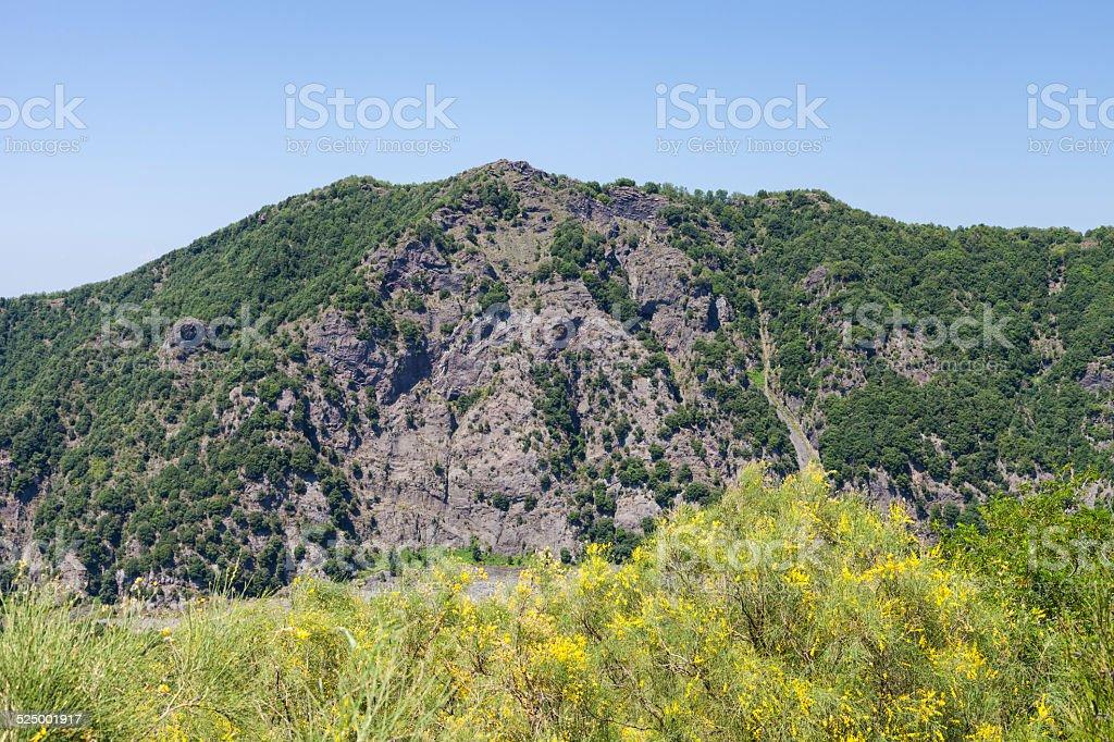 View from Vesuvius vulcano stock photo