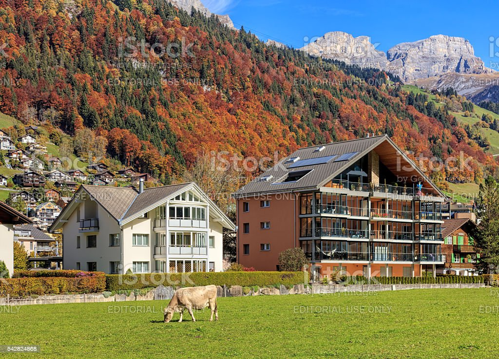 View in Engelberg in autumn stock photo
