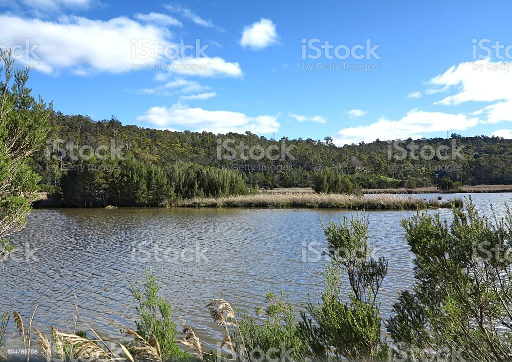 View in Tamar Island stock photo