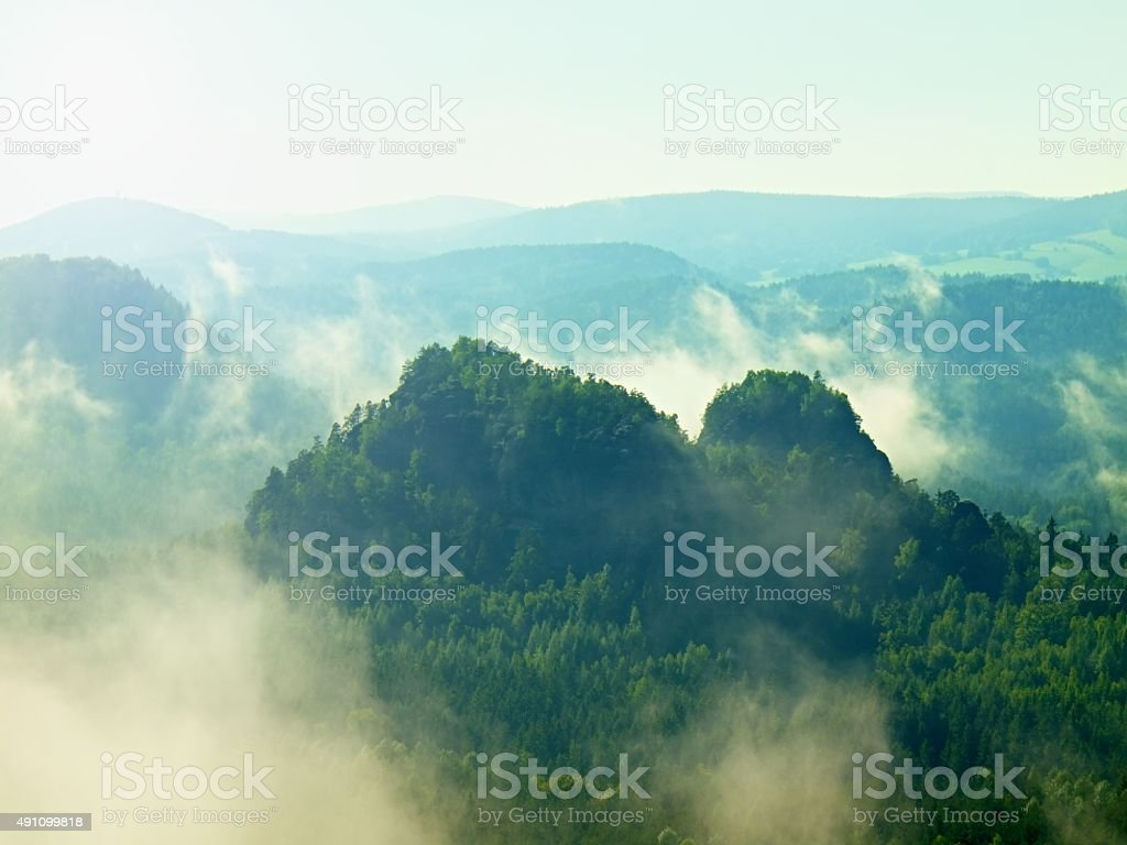 View into deep misty valley in Saxony Switzerland. stock photo