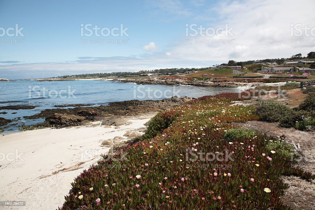 View of 17 Mile Drive in California stock photo