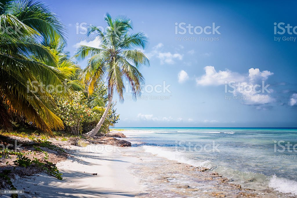 view of a beach on the island of Dominican Republic stock photo
