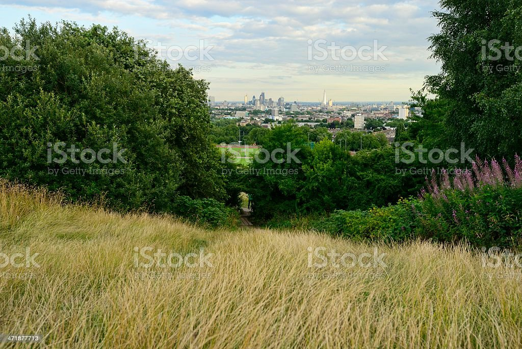 A view of a city and forest from the top of Parliament Hill stock photo