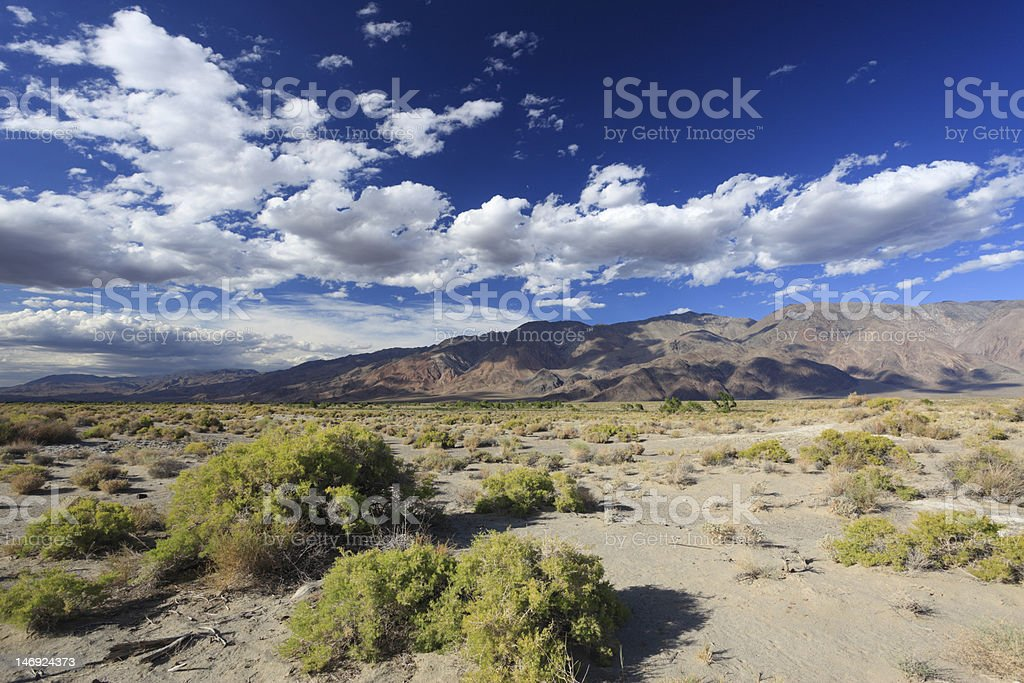 View of a desert in eastern California royalty-free stock photo