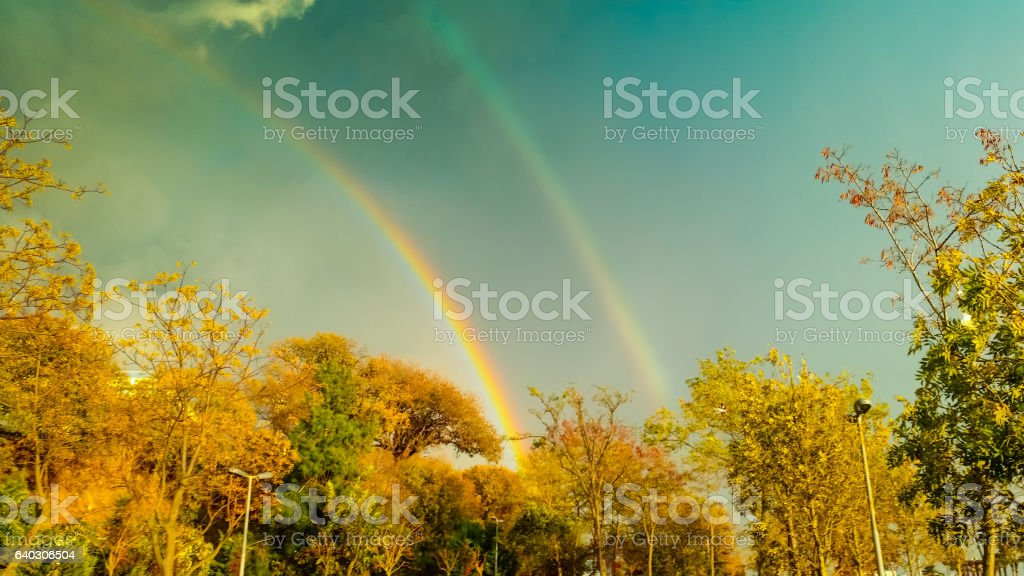 View of a double rainbow from behind the trees stock photo