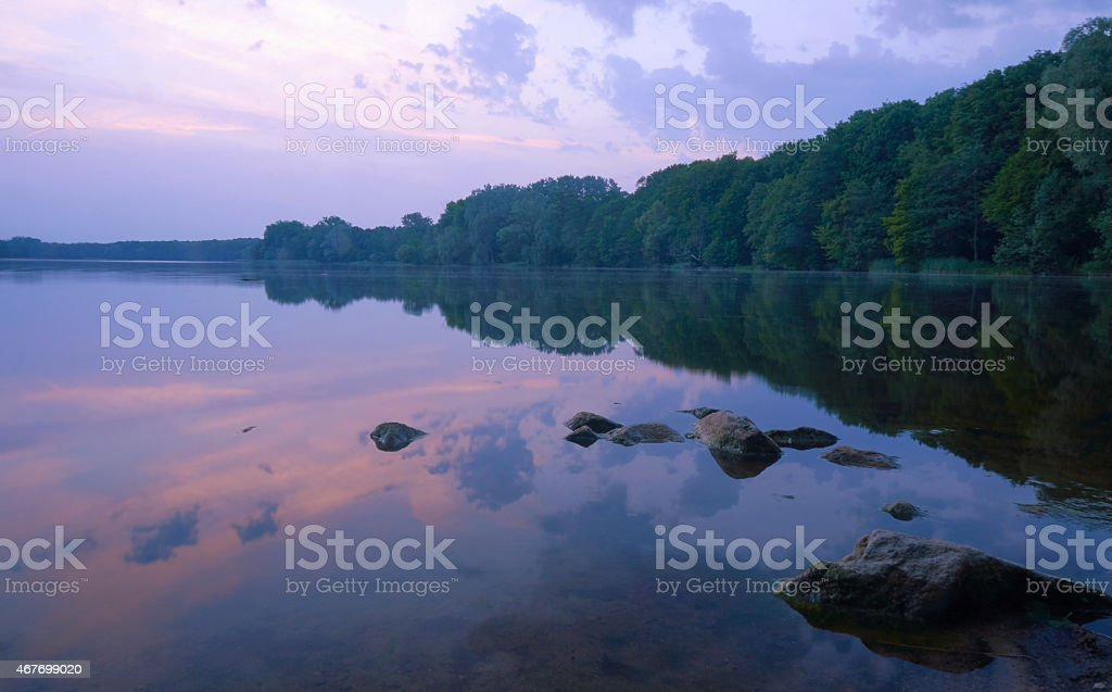 View of a forest on lake shore stock photo