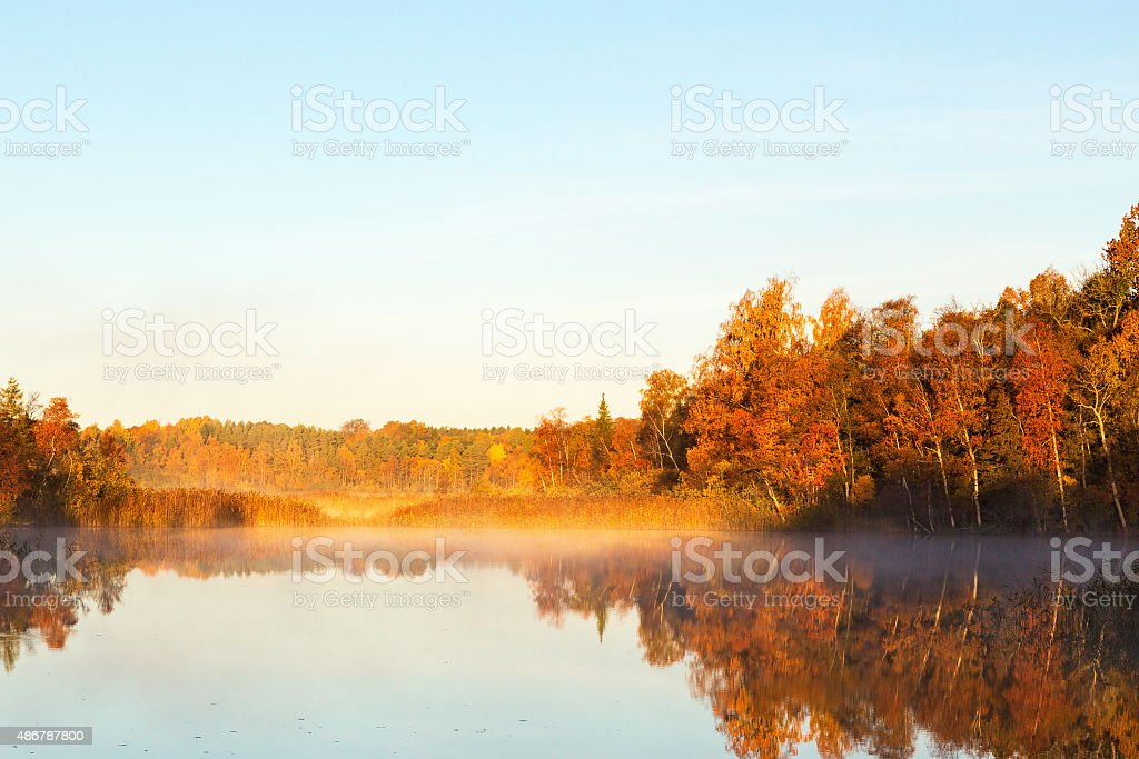 View of a lake with mist at dawn stock photo