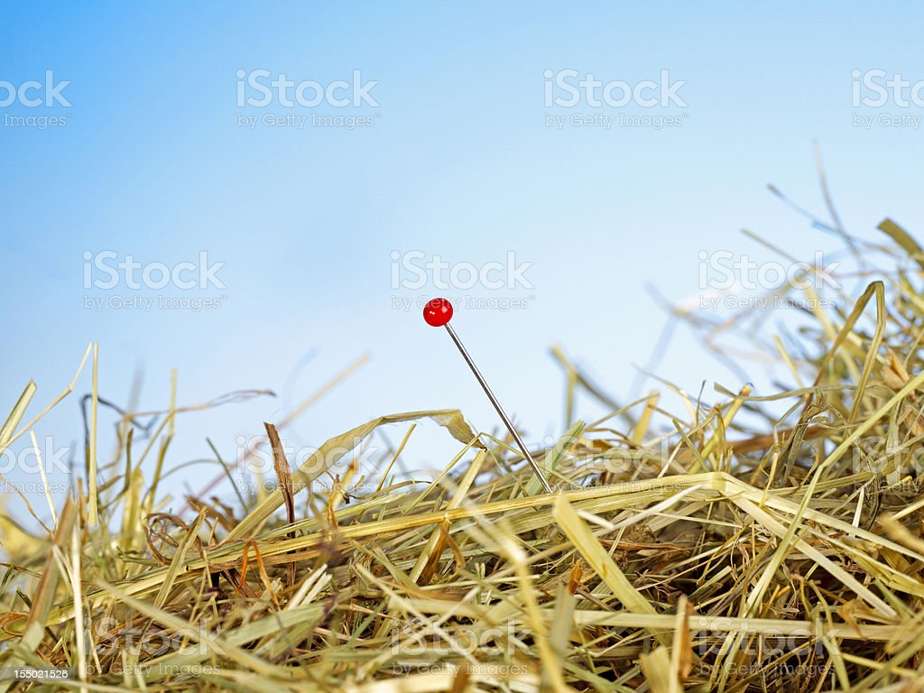 View of a needle in a haystack stock photo