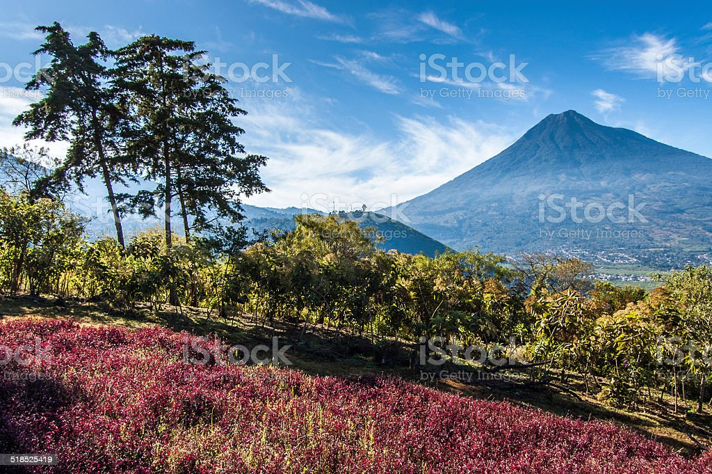View of Agua Volcano outside Antigua, Guatemala stock photo
